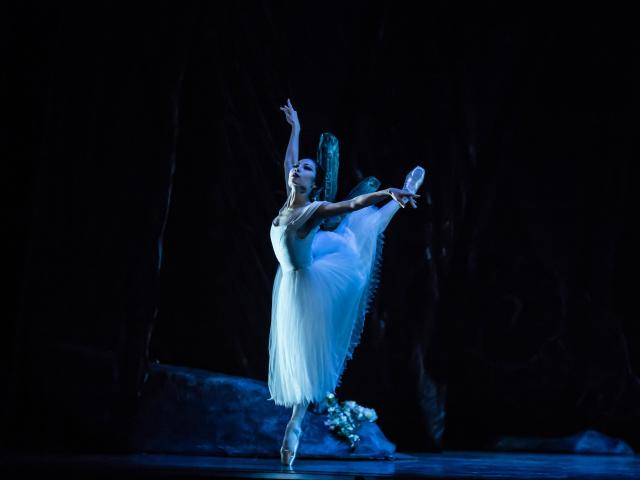 Mayu Tanigaito dances the role of Myrtha, Queen of the Wilis. Photos by Stephen A'Courte.