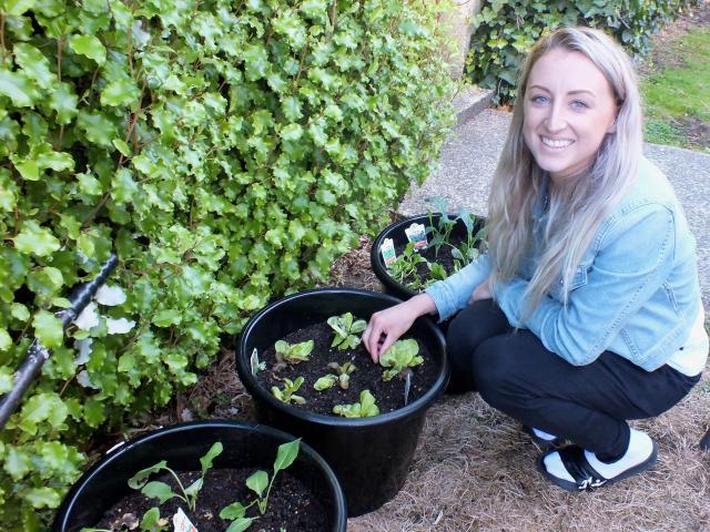 Jazz Rowe is encouraging her boys to garden. Photos: Gillian Vine.