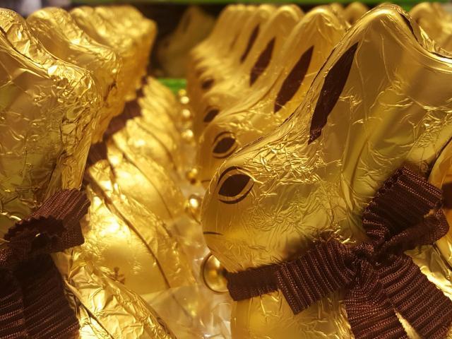A flood of Easter rabbits. Photos: David Loughrey.