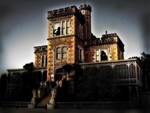 Larnach_Castle2__Small_.jpg
