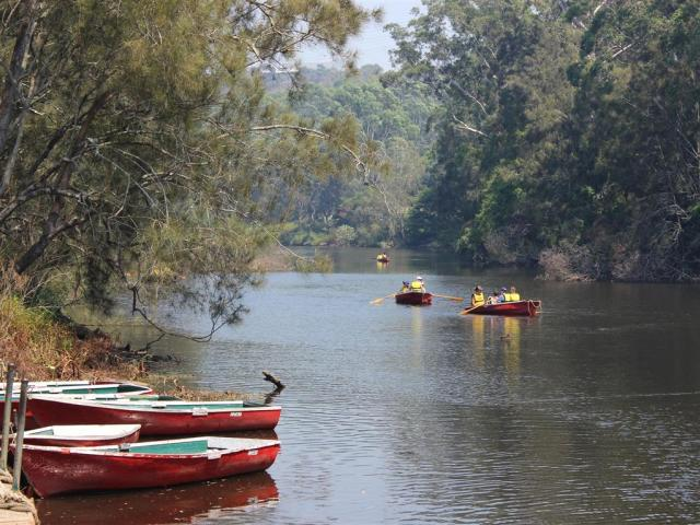 Rowboats on the Lane Cove River, in the middle of Sydney. PHOTO: ALLISON BECKHAM