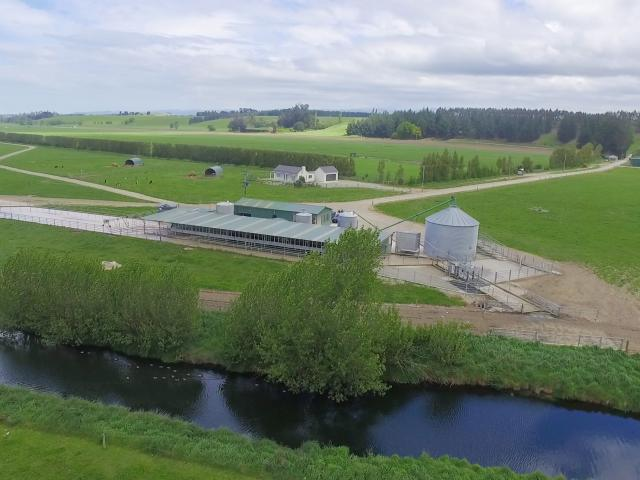 Four farms near Oamaru owned by one of New Zealand's larger  dairy farming companies,  Borst...