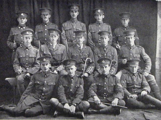 Officers and NCOs of D Company, 25th Reinforcements. Standing (from left): G. E. Williamson, H. D...