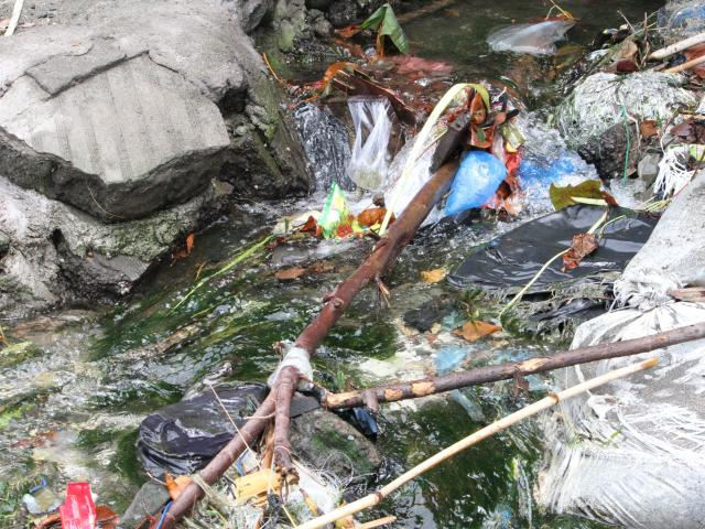 Plastic clogs a stream.