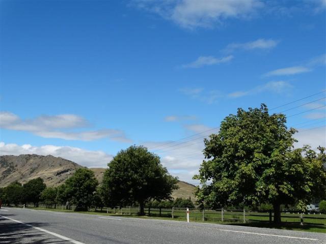 Ladies Mile, near Queenstown. Photo Tracey Roxburgh