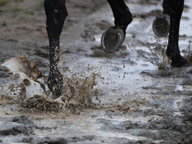 The Jockey Club has postponed its meeting due to wet conditions. Photo: Getty