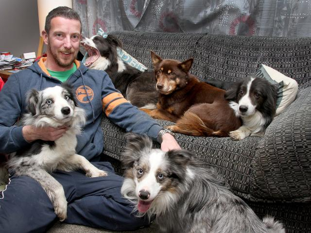 Dunedin dog owner Reece Smith is grateful he is eligible for a registration fee reduction. Mr...