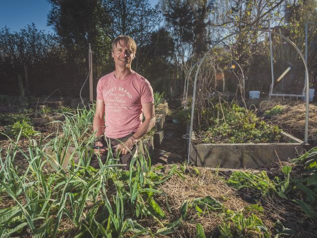 Ben Elms has been saving and growing one of his garlic varieties for 17 years. Photos: Si Williams