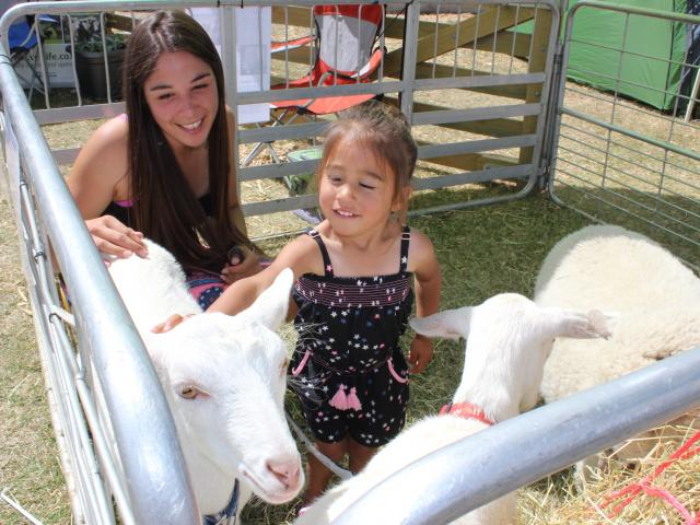 Hanging out with the goats at the 2017 show were Jessica and Jahleigha Nichol of Alexandra.
