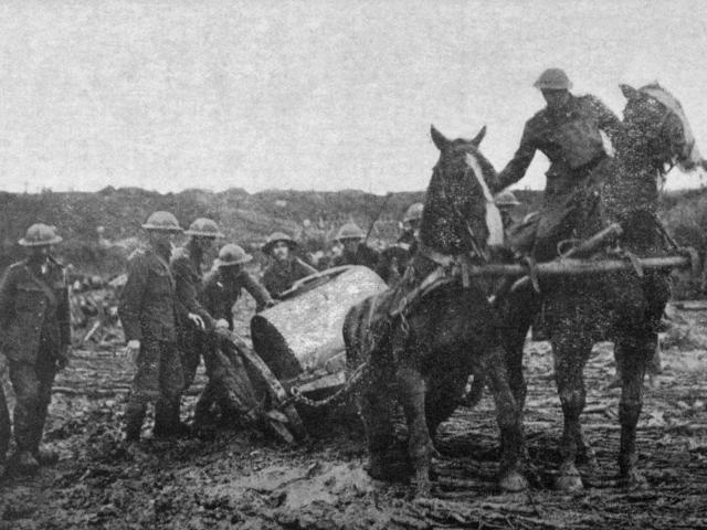 """The eternal mud'' - a horse in difficulties in Flanders. - Otago Witness, 9.1.1918."