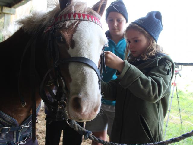 Everglades inspects what's going on as Natalie Russell (8) front, and Charlotte Strachan (11) do...