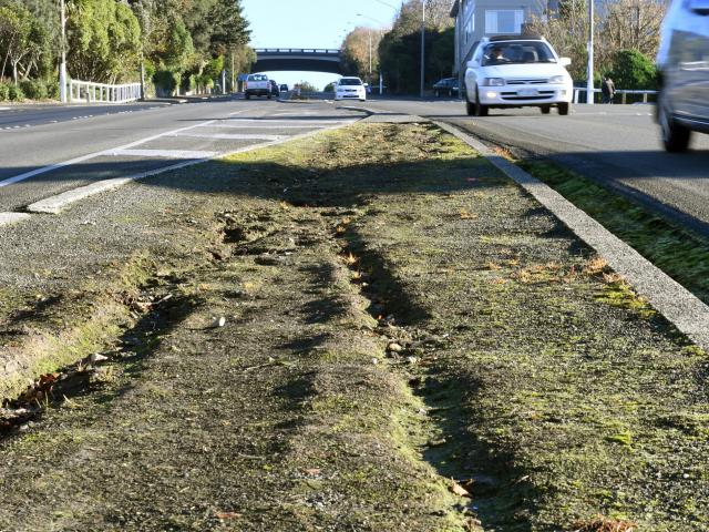 Awaiting vegetation ... The Stuart St median strip is to be beautified again next year. PHOTO:...