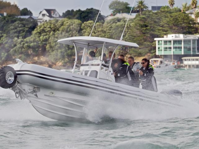 Amphibious craft manufacturer Sealegs won a High Court decision in July which found former...