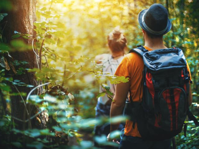The theme of this year's Mental Health Awareness Week is getting back to nature. Photo: Getty Images