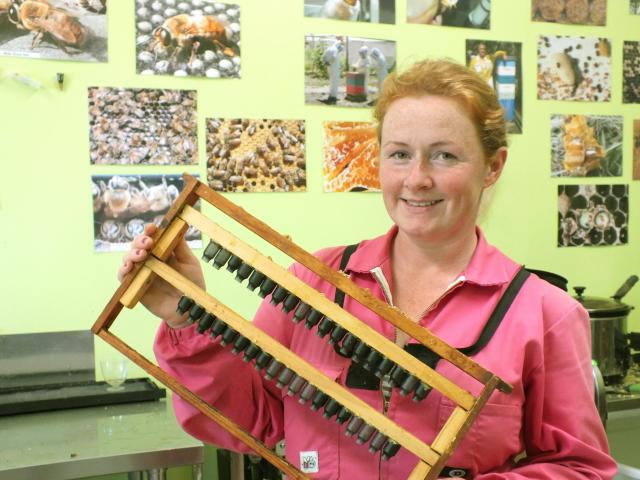"""Heidi Rixon with the unit in which she breeds """"nice golden brown"""" queen bees."""