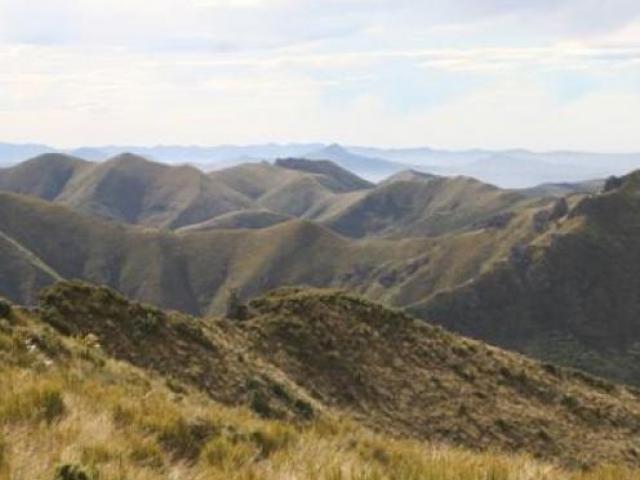 The wilds of the Silver Peaks, near Dunedin.