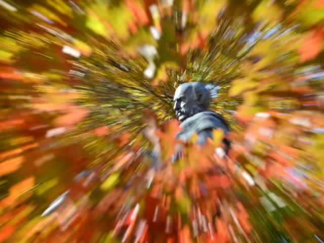 A statue of the Rev Dr Donald Stuart is surrounded by autumnal colours in Dunedin yesterday....