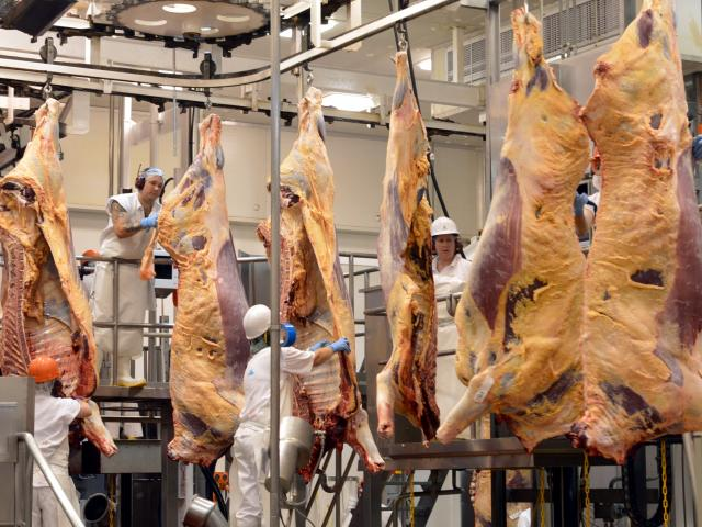 In use at 79 sites in France and Uruguay at present; pictured, beef being processed in a South...