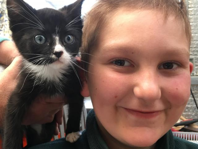 Tazy, the kitten, bonds with his new owner Frans Duplessis (11) after enduring a rough start in...