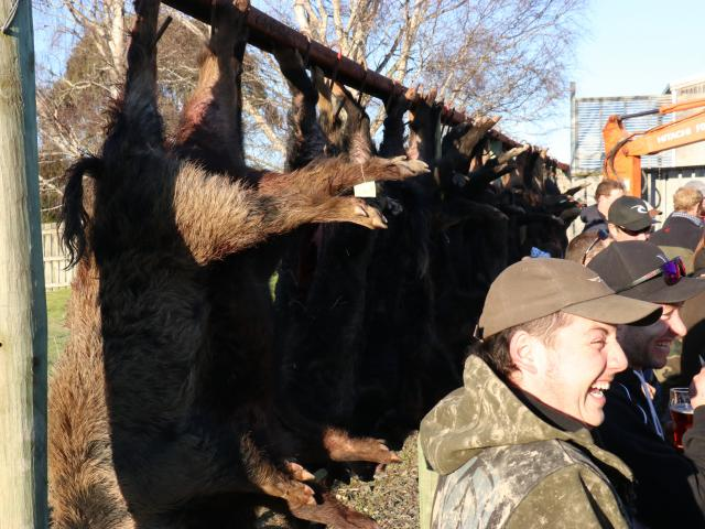 The results of the Catlins Boar Hunt at the weekend. PHOTO: JACK CONROY