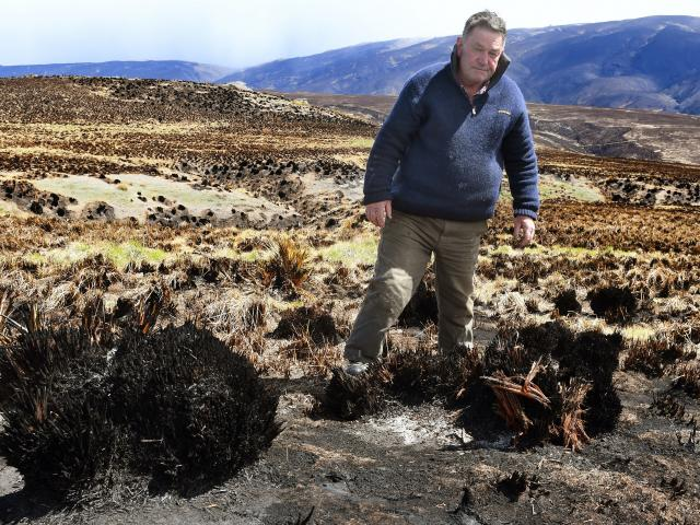 Standing by the remnants of the 5000ha blaze and campaigning for change to prevent future fires...