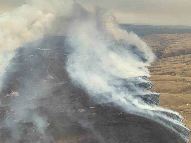 The fire near Middlemarch has spread rapidly in hot, windy conditions, burning through 2400ha of...