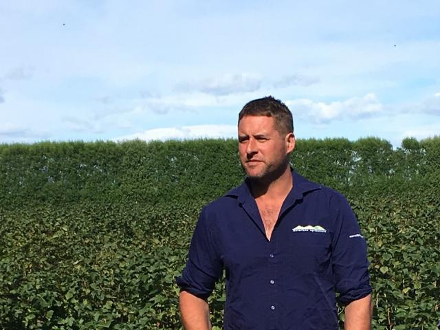 South Canterbury blackcurrant grower Hamish McFarlane. PHOTO: SUPPLIED