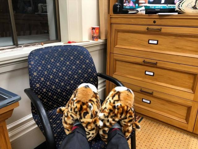 Michael Woodhouse's fluffy slippers.  PHOTO: FACEBOOK