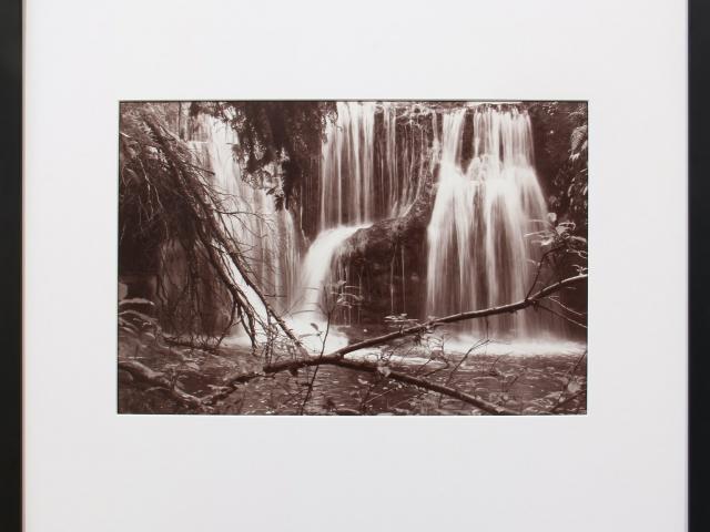 From the Banks of Waipahatu toward Punehu Falls, the Catlins, by Wayne Barrar