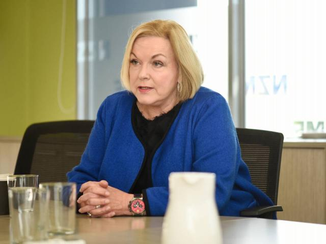 National Party leader Judith Collins. Photo: George Novak