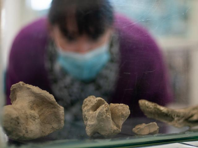 Maniototo Community Library team leader Aimee Pieterse checks out the recently discovered moa...