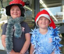Brothers Kaleb (9) and Logan  (6) Field, of Balclutha.