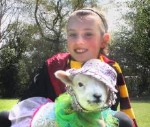 "Thornbury Primary School pupil Talia Raines (10) and her ""baby'' pet lamb Louis at the school's pet day yesterday."