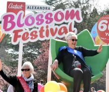 Senior Festival Queen Liz Duggan (right) and runner-up Maureen Davies wave to the crowd during...