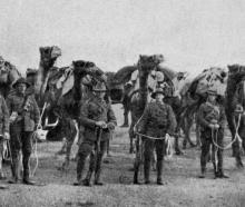 New Zealand men of the Imperial Camel Corps in the Egyptian desert. - Otago Witness, 28.3.1917.