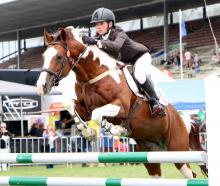 John McGlashan College pupil Noah Coutts (13), of Mosgiel, rides at the Horse of the Year Show in...