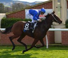Trainer Sean Cameron and jockey Dylan Turner combine again with Lord Sibsford, one of six horses...