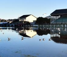 Heavy rain that hit Dunedin over the weekend has sent Tahuna Park's turf under water and turned...