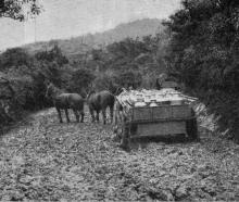 The bad state of the Leith-Waitati Road. The wagon belongs to Mr Buckland. - Otago Witness, 12.12...