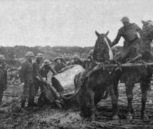 """The eternal mud'' - a horse in difficulties in Flanders. - Otago Witness, 9.1.1918."