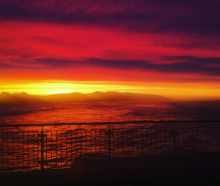 Rachel Hellyer took this stunning shot from a cafe in St Clair, Dunedin.