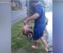 A man has impressively caught two octopuses with his bare hands while walking along the Dunedin...