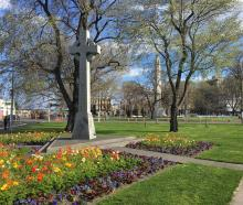 Warm weather on display at Dunedin's Queens Garden today. Photo: ODT