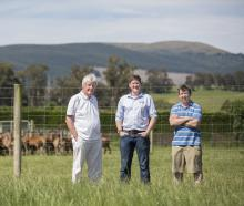 Prof Frank Griffin, Dr Rory O'Brien and Simon Liggett from DRL Ltd. Photo: Supplied