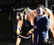 Shari Jamie enjoys riding and handling 5-year-old mare Fire Lily. Photos: Supplied