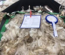 The Paterson family, from Armidale, in the Maniototo, won supreme champion fleece at the New...