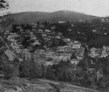 Dalmore and Gladstone, Dunedin, from the Botanic Gardens hill. — Otago Witness, 11.12.1918.