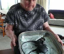 Balclutha resident Mary Laurenson received a fright on Monday morning when the toughened glass...