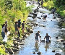 St Margaret's College residents clean up the Water of Leith near the University of Otago. Photo:...
