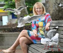 Dunedin resident Sophie Barker with threatened red-billed gulls, in Dunedin's Octagon. Photo:...